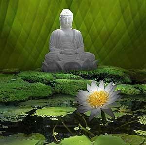 buddha-en-un-estanque-de-lotos